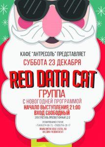 Red Data Cat в кафе Антресоль