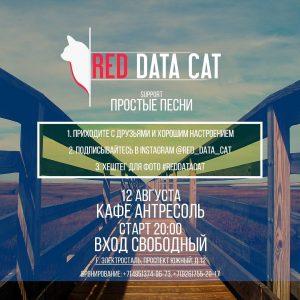 Red Data Cat в Антресоль